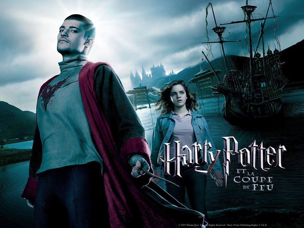 Collector harry potter - Harry potter et la coupe de feu cedric diggory ...